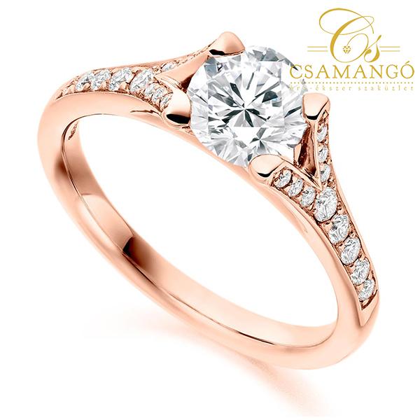 a féreg gyűrűje